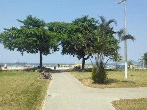 One small section of Santos' world record sized beach front garden