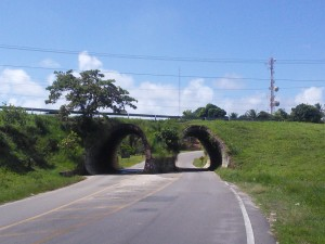 Now down south, one of the island's two road junctions
