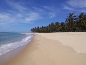 Gunga Beach - tropical end