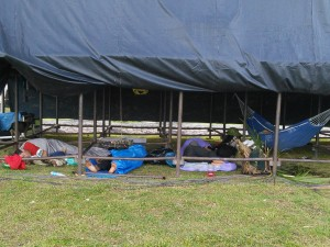 Next morning - visitors sleeping under the main stage